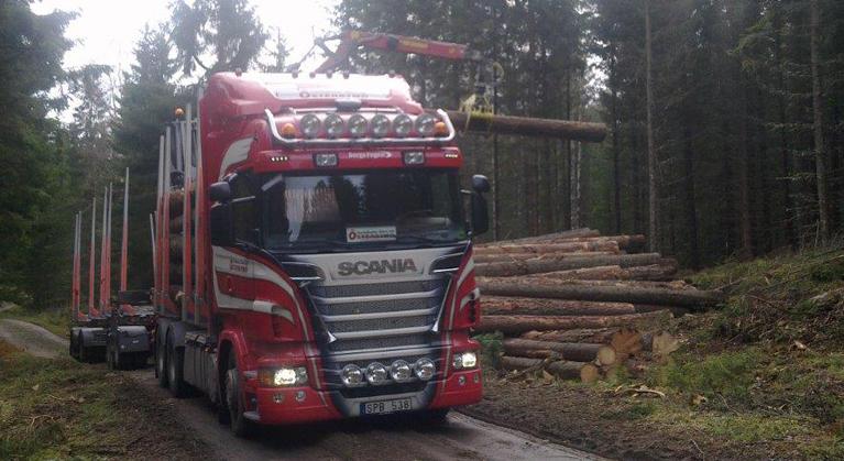 Skogstransporter